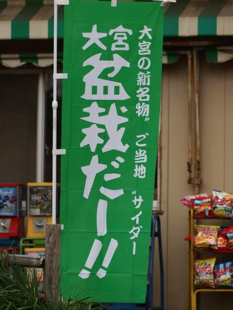 120415_sakura_03.jpg