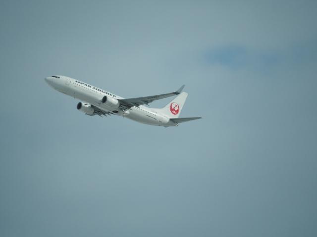 170206_yukimaturi_13.jpg
