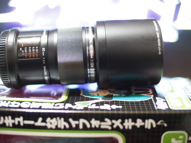 P1241337.JPG
